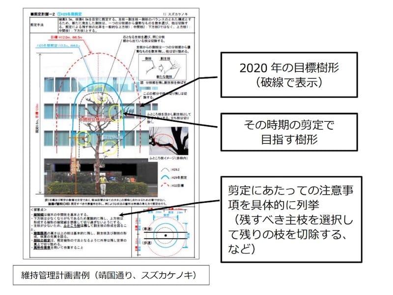 東京2020に向けた東京都「暑さ対策」推進会議より