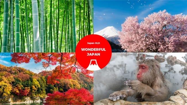 Japan OLDイメージ