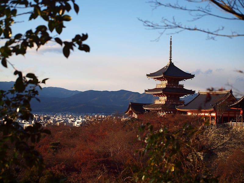 京都の舞妓によるお座敷体験を外国人に提供するサービス「Enchanted Time with Maiko」が考える ホテルに提携のお願いをする上で重要なこと