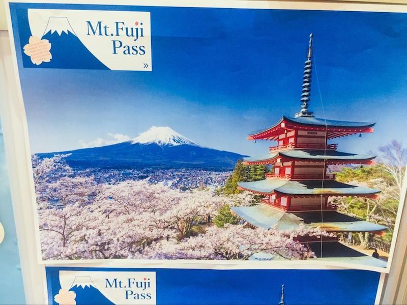 ▲静岡で「インスタ映え」と言われている風景