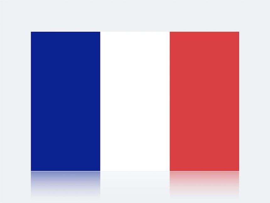 訪日フランス人観光客のインバウンド