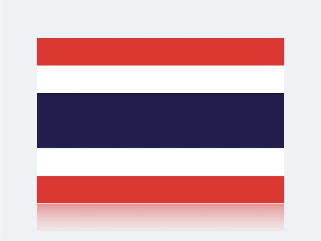 訪日タイ人観光客のインバウンド
