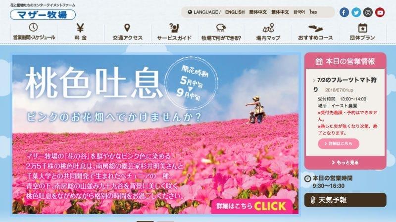 千葉県富津市の巨大牧場型テーマパーク「マザー牧場」のSNS・ソーシャル運用