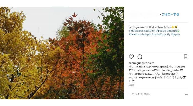 紅葉を鑑賞しにくる訪日外国人も多い模様