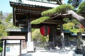 インバウンド人気観光地ランキング16位「長谷寺」の人気の理由・インバウンド対策とは