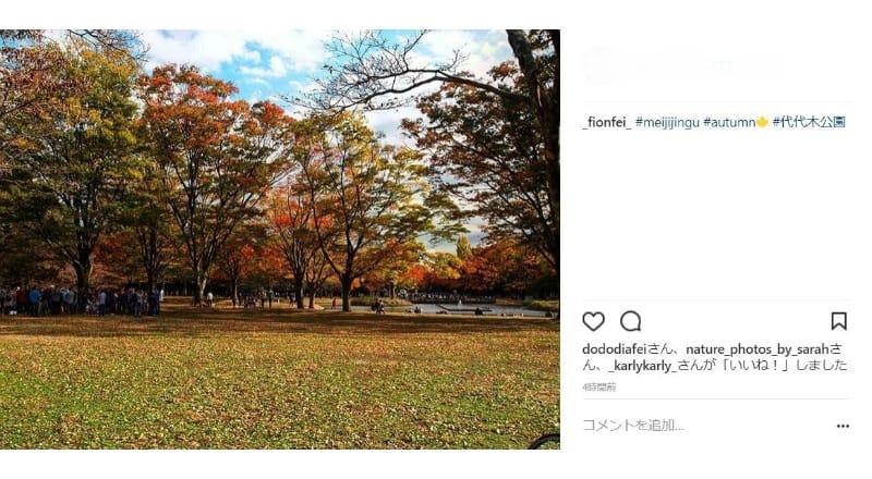 秋には紅葉の写真撮影が訪日外国人に人気