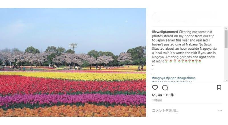 昼間は庭園の写真撮影が人気